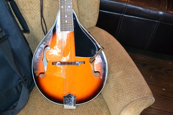 Mandolin by New York Pro - with gigbag - $70 (Keene, CA.)