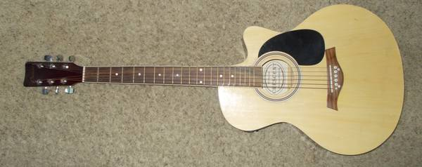 ACOUSTIC ELECTRIC GUITAR CRESCENT NEW ROAD RUNNER PADDED GIG BAG - $1 (ROSEDALE JEWETTA OLIVE DRIVE)