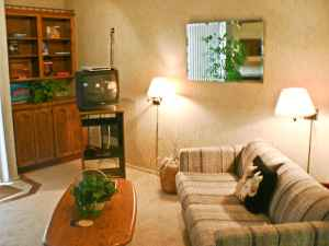 - $79 Sun Valley Summer (Sun Valley, Idaho)