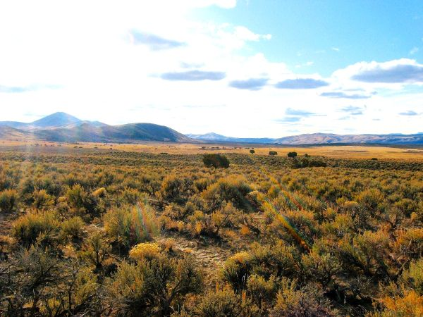 $13995 2.28 Acres (2 Lots) on South Fork Humboldt River-Meadow Valley Ranchos (Elko, NV - Meadow Valley Ranchos Unit 12)
