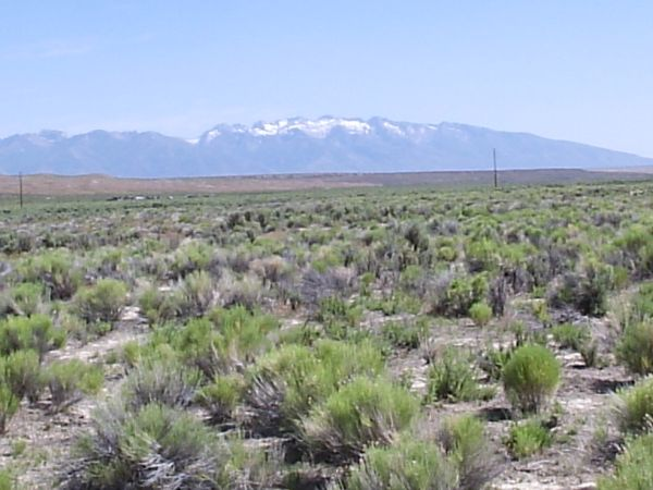 $2900 Elko, NV Land For Sale 2.5 Ac. (Meadow Valley Ranchos Unit 4)