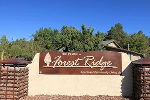 $812 2br - 903ftsup2 - 2 Bedrooms Starting at $812 per month (The Place At Forest Ridge)