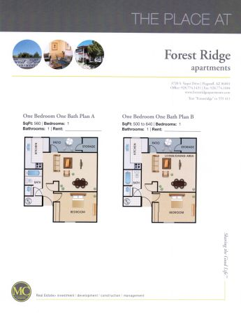 $771 2br - 903ftsup2 - Pet Friendly, No Breed or Weight Restrictions (The Place At Forest Ridge)