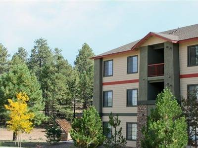 $552 950ftsup2 - Roommate Wanted 2 Bedroom, 2 Bathroom (Clear Creek Village Apartments)