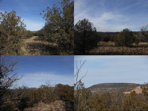 $9600 Broken Arrow, 4.6 Acre (Ash Fork)