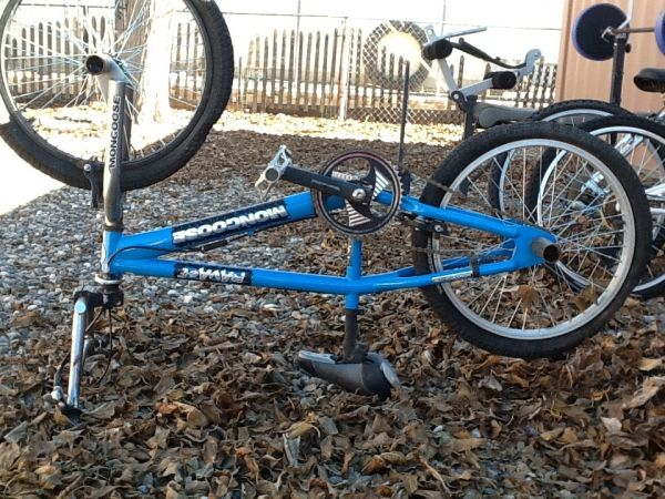 Blue mongoose ravage - $65 (Cottonwood AZ)