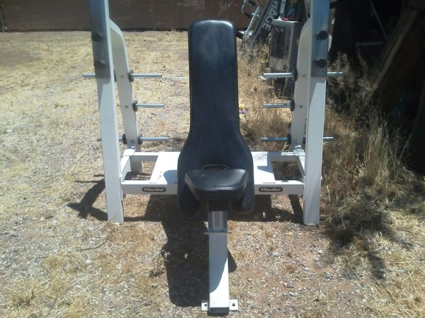 Nautilus Incline Bench, weights,ab equip,punching bag (Cottonwood)