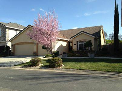 - $450 Room for Rent in Lovely Gold Creek Home - MALE $450 mo. (Valley Springs)