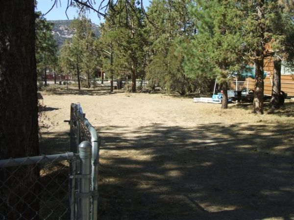 $79000 5000ftsup2 - level lot with pine trees 50x100 (big bear,ca.)