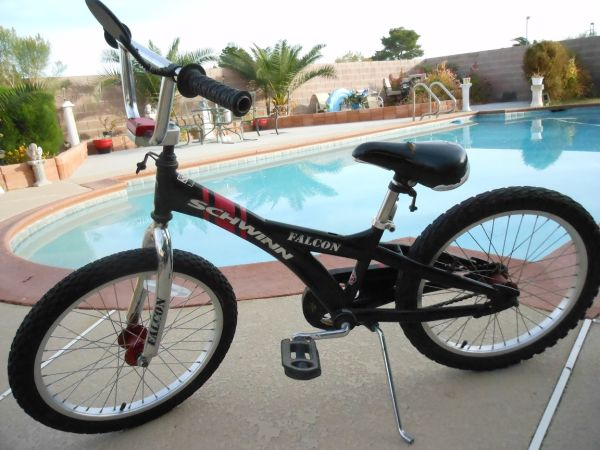 Schwinn Falcon BMX Bike-20 Tires - $45 (East)