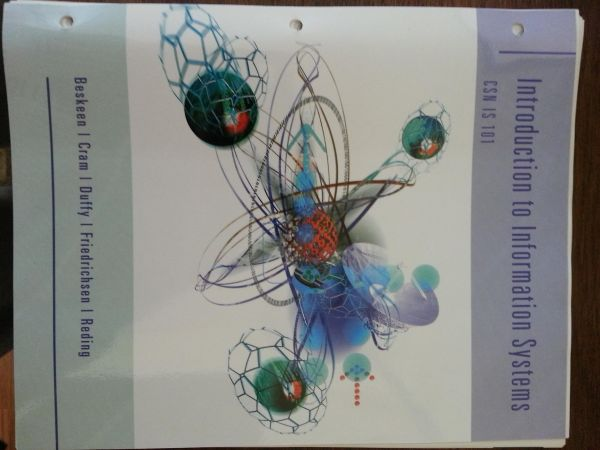 Introduction to Information Systems (north las vegas)