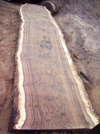 Highly figured claro walnut slabs, lumber and blocks (SF)