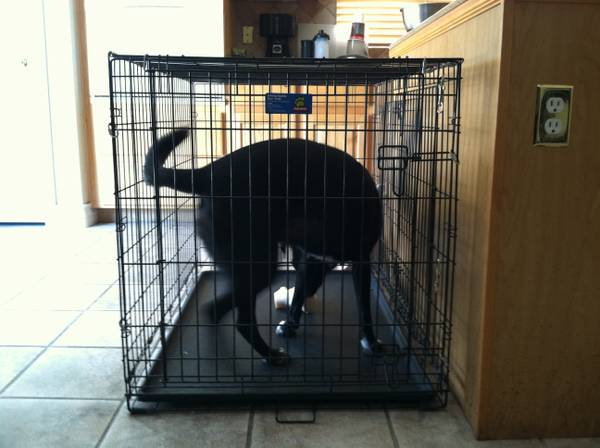 Large Dog Crate, LIKE NEW - $80 (Silverado Ranch)