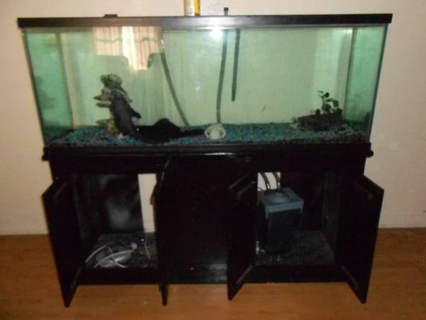 100 gallon Fish Tank with Stand - $400 (merced)