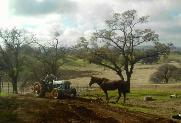 - $400 300ftsup2 - Country room available, bring your horse (La Grange)
