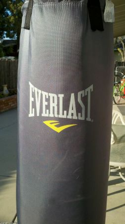 80 lb Everlast Canvas Punching Bag w speed bag - $70 (ceres)