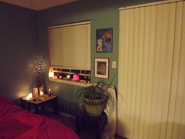- $1000 Gluten Free Fully Furnished Sublet (San Clemente, North Beach)