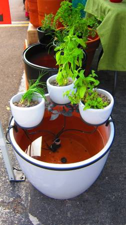 Living Fountains - Aquaponics - $150