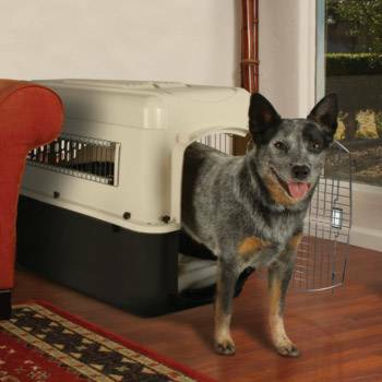 Petco Premium Dog Kennel for home or Travel - $60 (mission viejo)