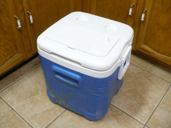 Igloo Ice Chests - Coolers - $7 (Glendale --- 59th Ave and Cactus)
