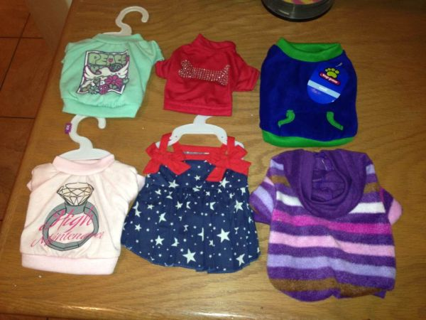 Lot of Dog clothes - $40 (Happy Valley I 17)