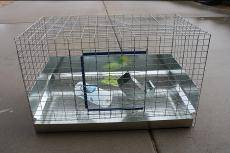 Rabbit Cage with Sliding Tray - $80 (Mesa)
