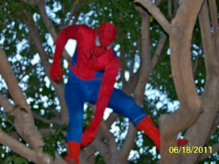 Spiderman Theme for Your Party (Valleywide)