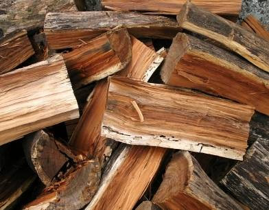 ---- FIREWOOD JUNIPER ---- (all areas)