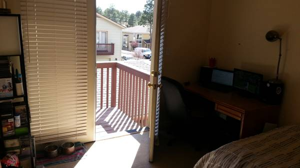 - $350 250ftsup2 - Room near NAU for summer (Rio Homes)