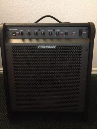 FISHMAN LOUDBOX PRO Acoustic Guitar Amplifier 250W OBO - $250 (Provo)