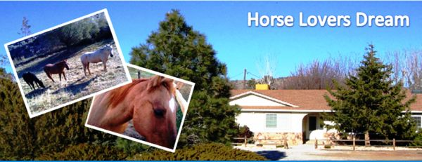 Great Horse Property for sale or lease option (Reno - Golden Valley)