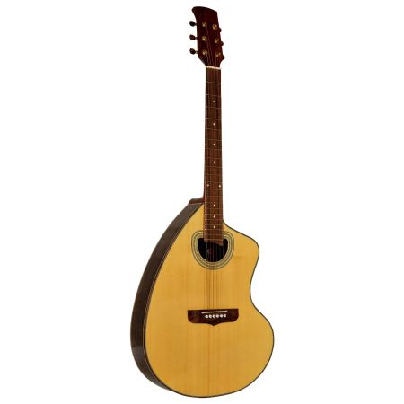 Giannini Handcrafted Series Craviola Steel String Acoustic Guitar - $450 (Goleta)
