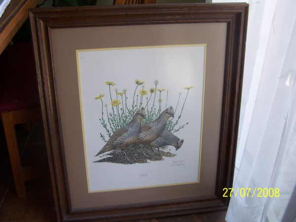 Ray Harm Quail art - $200 (Santa Maria)