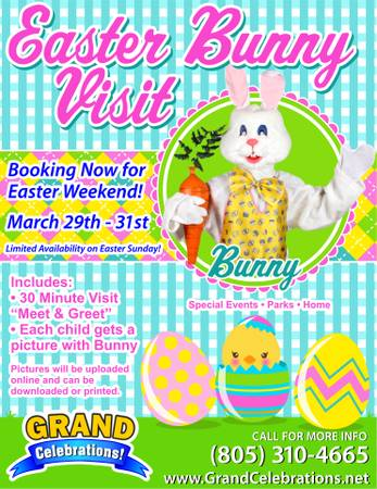 Easter Bunny Visits to Your Event (Central Coast)
