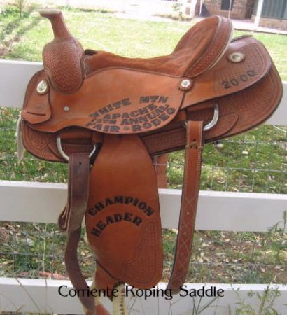 Like new Corriente Roping Saddle - $600 (Taylor)