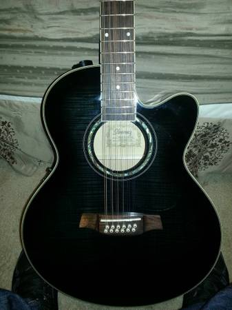 Ibanez 12-String Acoustic-Electric Guitar - $380 (French C)
